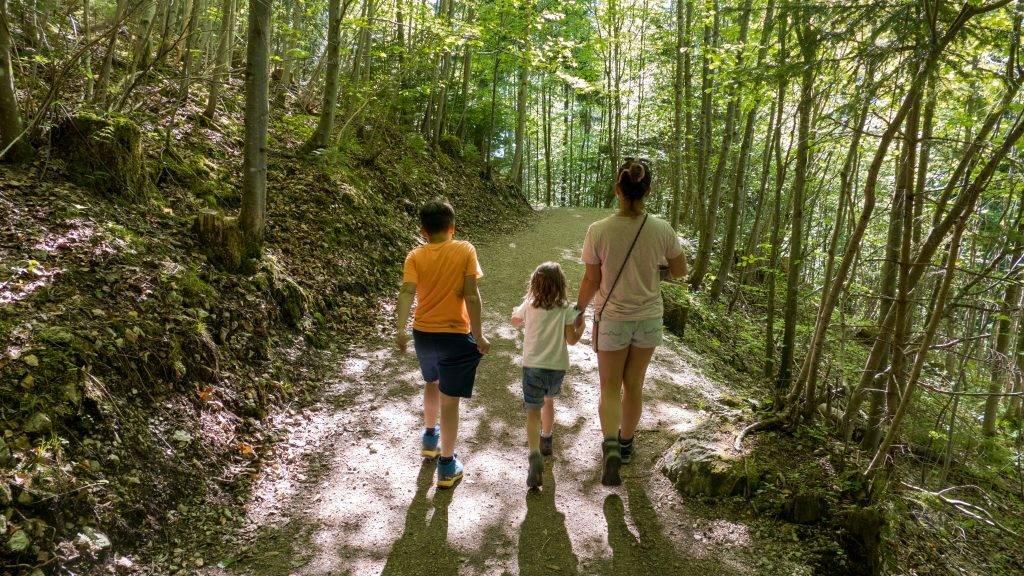 Walderlebniszentrum Ziegelwies Berwaldpfad