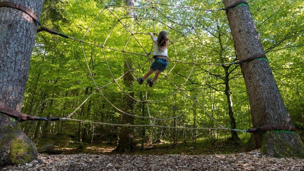 Walderlebniszentrum Ziegelwies Berwaldpfad Spinnennetz