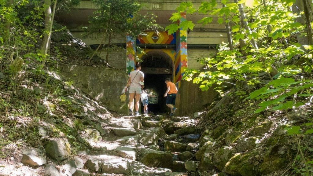 Walderlebniszentrum Ziegelwies Einstieg Bergwaldpfad