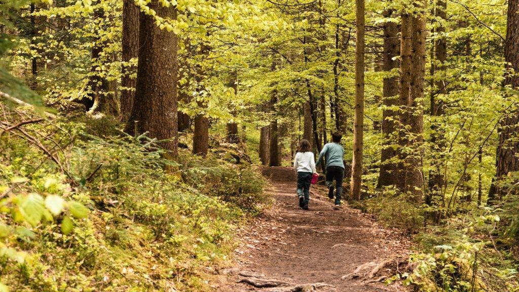 Wandern Kindern Baiersbronn