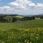Einfache Allgäuer Drei-Hüttenwanderung zum Naturspielplatz in Rettenberg