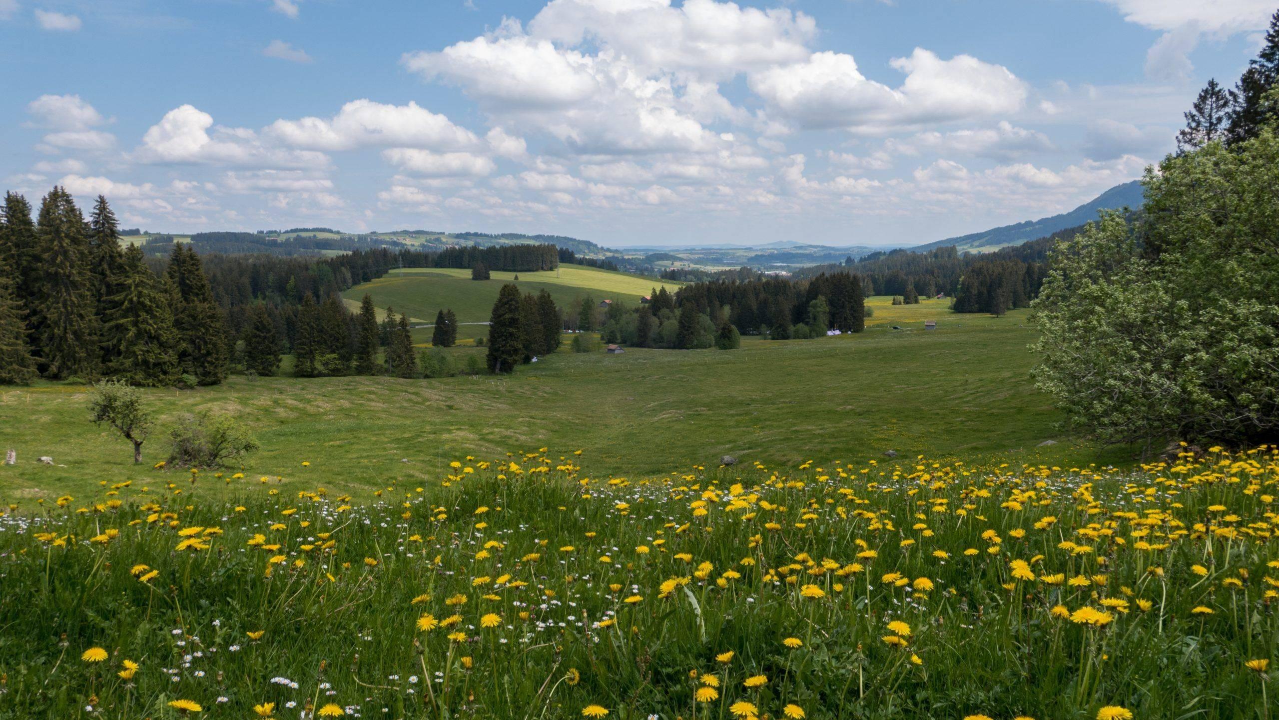 Wandern Wertag Allgäu