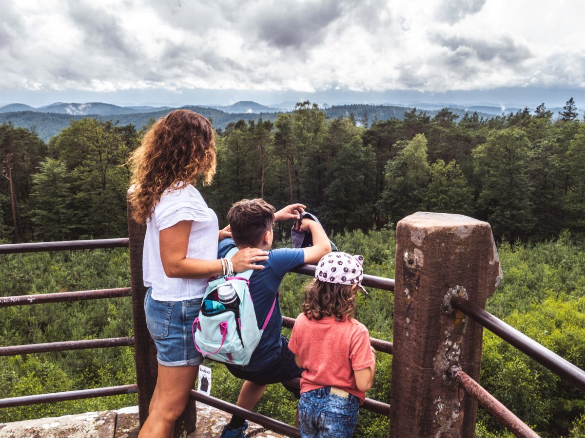 Ausblick Schänzelturm Wandern Pfälzerwald