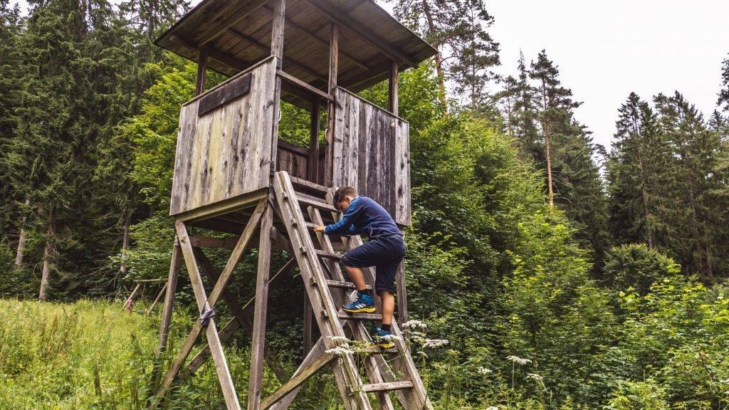Ausguck Holzwurmpfad Kinder Wandern