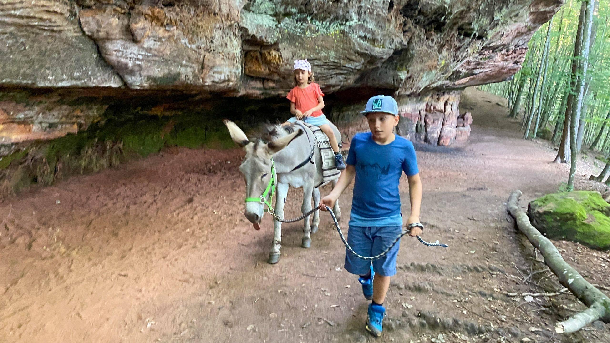 Kinder Wandern Esel Pfalz