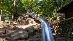 Riesenrutsche Hohe Loog Pfälzerwald